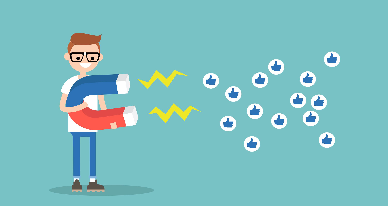 Social Solutions SA Facebook Likes
